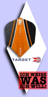 Target - Raymond van Barneveld - 100 Mikron Standard Flights No.6 Black-Orange Curve